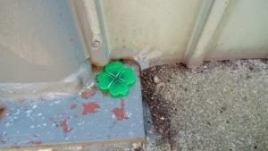 1階の外柱にアリの巣コロリを置く